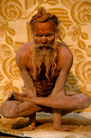 Aside from a life of simplicity and focus on the Divine, many sadhus engage in a diverse array of practices both internal and external in order to attain higher states of awareness and consciousness. This sadhu has chosen Hatha yoga and shows off the results—a well-disciplined, strong body—while holding the kukkuta asana, or cock pose. Although Hatha yoga is partially physical in nature, there are many internal, mental practices that accompany the outer, physical postures. Through the united control of body and mind, the sadhu prepares for deeper, more advanced meditation.  Hatha yoga also helps the ascetic with sexual control and sublimation: yogic technique allows the semen to be retained, forced upward and finally converted into shakti, the divine female power that is the basis of all creation.
