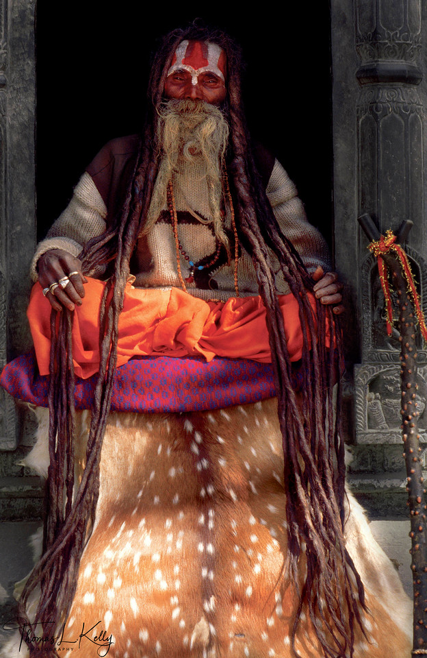 """By looking into the eyes of eight-six-year-old Vaishnava, Hanuman Das, the social function of the sadhu as a charismatic guru, compassionate transmitter of spiritual energy and earthly representative of the divine is plainly evident. Like other magnetic sadhus, Hanuman Das likely receives offerings, which he either keeps, sacrifices to his deity, or returns to the devotees as blessed prasad, """"food from the gods."""" Just as viewing a consecrated image of a Hindu deity is referred to as darshan, or a returned divine gaze, so too do sadhus allow themselves to be looked at as a means of transmitting their spiritual energy to admiring devotees. As a renunciant, the sadhu is the exemplar of religious practice and closest to the divine, therefore he is capable of giving blessings and spiritual instructions. Darshan may even be given through the photograph of a sadhu.<br /> <br /> Hanuman Das sits atop a spotted deerskin—now a substitute for endangered tigers and lions—which is not only a symbol of power, but also is thought to prevent the energy accumulated during meditation from escaping into the earth."""