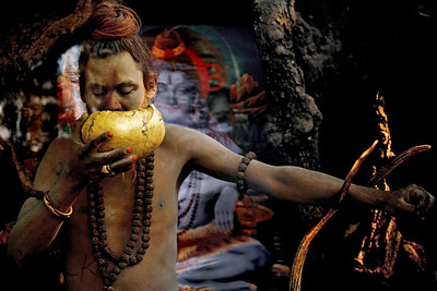 "The Aghori sub-sect of Shaivas mostly closely resembles one of the earliest organized groups of Hindu ascetics, the Kapalikas or ""bearers of skulls"", who originated in the ninth or tenth century. Like the modern-day Aghori, Kapalikas worshipped the terrifying manifestation of Shiva, Bhairava, and were known to perform human sacrifice, which often involved offering their own flesh to the deity in acts of self-mutilation and even ritual suicide. Though these extreme practices have evolved into symbolic acts today, the Aghori still utilize human skulls, as seen in this photograph. Drinking out of a skullcup (kapala) is a magical act in which the sadhu partakes of the deceased's life-force, controlling it with the use of mantras. The skull also serves as a constant reminder of human mortality and the necessity of conquering the duality of life and death.  Because of their taboo behavior, Aghori ascetics remain on the furthest fringes of Hindu society. They drink alcohol, eat meat, and use obscene language, transgressions that defy conventional Hindu rules of purity and pollution and thus transcend all dualities in the most overt and concrete manner."