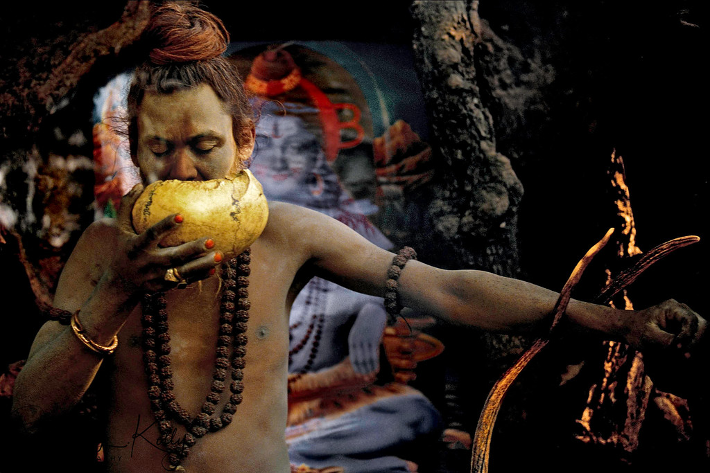 """The Aghori sub-sect of Shaivas mostly closely resembles one of the earliest organized groups of Hindu ascetics, the Kapalikas or """"bearers of skulls"""", who originated in the ninth or tenth century. Like the modern-day Aghori, Kapalikas worshipped the terrifying manifestation of Shiva, Bhairava, and were known to perform human sacrifice, which often involved offering their own flesh to the deity in acts of self-mutilation and even ritual suicide. Though these extreme practices have evolved into symbolic acts today, the Aghori still utilize human skulls, as seen in this photograph. Drinking out of a skullcup (kapala) is a magical act in which the sadhu partakes of the deceased's life-force, controlling it with the use of mantras. The skull also serves as a constant reminder of human mortality and the necessity of conquering the duality of life and death.<br /> <br /> Because of their taboo behavior, Aghori ascetics remain on the furthest fringes of Hindu society. They drink alcohol, eat meat, and use obscene language, transgressions that defy conventional Hindu rules of purity and pollution and thus transcend all dualities in the most overt and concrete manner."""