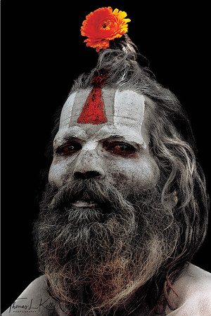 Although the forehead markings, or tilakas, are relatively uniform in relation to one's order, sect, and sub-sect, individual variations in both the tilaka and other body art are the norm, not an exception. This sadhu's vertically oriented tilaka that converges on the bridge of his nose shows him to be a Vaishnava, or follower of Lord Vishnu, known as the Preserver in the Hindu Pantheon of Gods. The flower in his hair is completely of his own design! Pashupatinath, Kathmandu, Nepal.