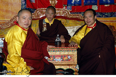 His Holiness 17th Gyalwang Karmapa