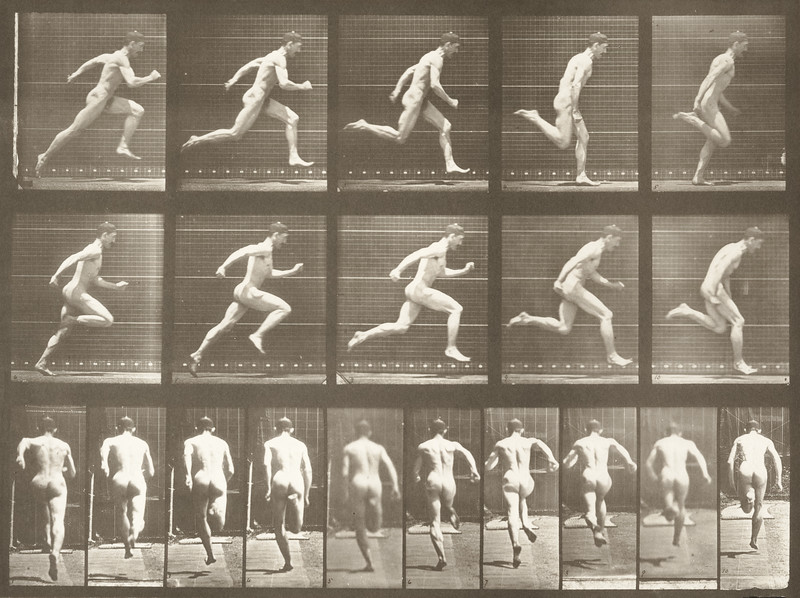 Nude man running at full speed (Animal Locomotion, 1887, plate 63)