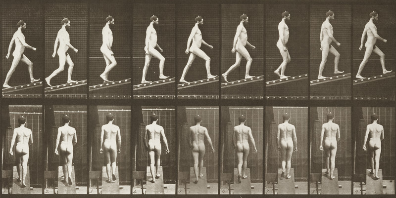 Nude male ascending an incline (Animal Locomotion, 1887, plate 75)