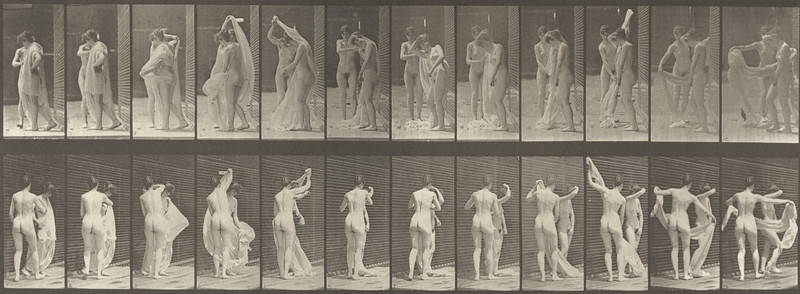 Nude woman disrobing another (Animal Locomotion, 1887, plate 428)