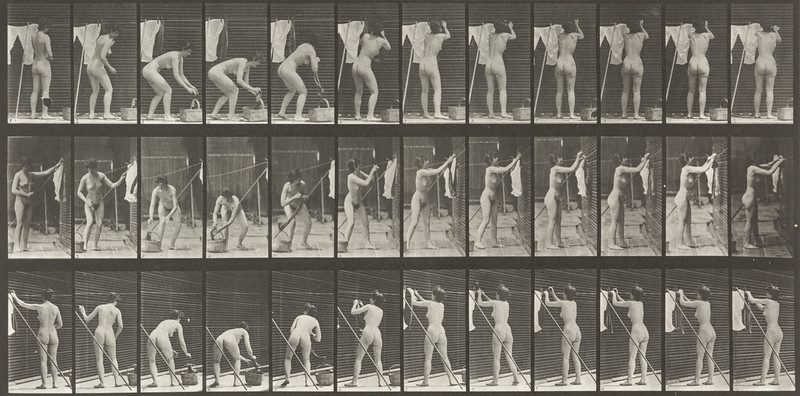 Nude woman hanging clothes on a line (Animal Locomotion, 1887, plate 434)