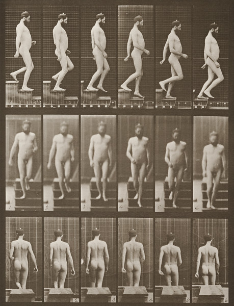 Nude man descending stairs (Animal Locomotion, 1887, plate 127)
