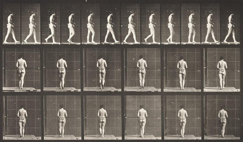 Nude woman walking with both elbows bent (Animal Locomotion, 1887, plate 21)