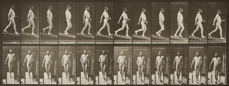 Nude man descending an incline (Animal Locomotion, 1887, plate 113)