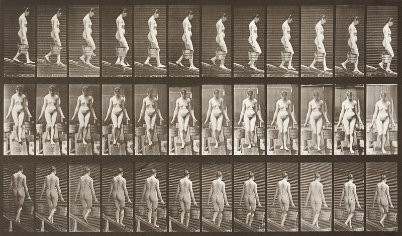Nude woman descending an incline with a bucket of water (Animal Locomotion, 1887, plate 121)