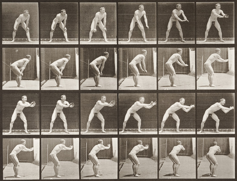 Nude man catching baseball (Animal Locomotion, 1887, plate 280)