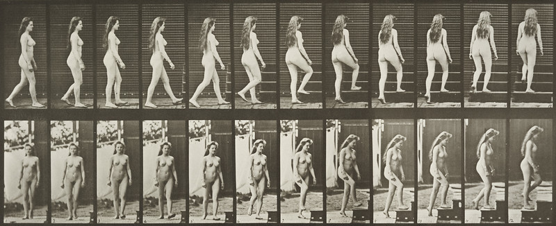 Nude woman turning and ascending stairs (Animal Locomotion, 1887, plate 99)