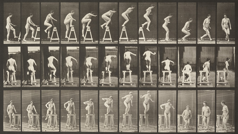 Nude woman stepping up on a trestle (Animal Locomotion, 1887, plate 171)