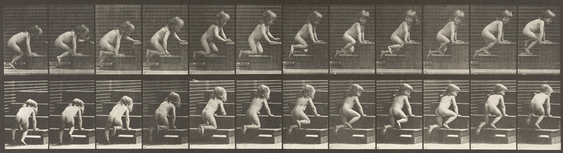 Nude child crawling (Animal Locomotion, 1887, plate 472)