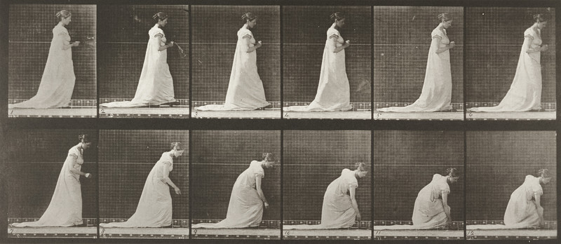 Woman in long dress dropping fan and stopping to lift it (Animal Locomotion, 1887, plate 208)