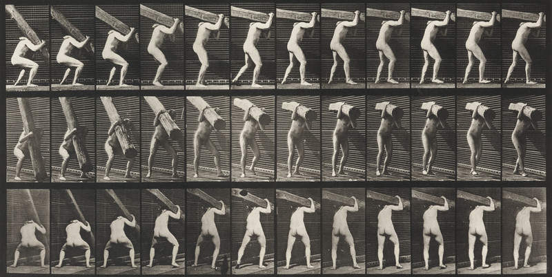 Nude man lifting a log on shoulder (Animal Locomotion, 1887, plate 383)