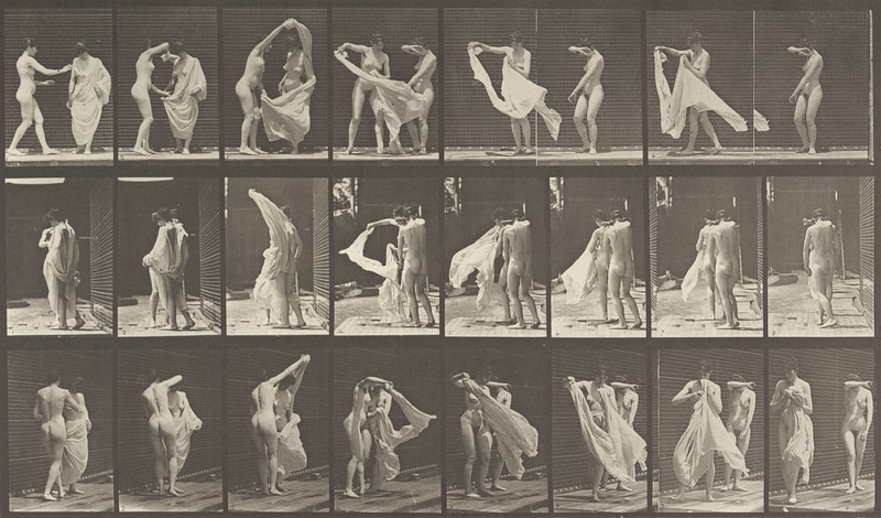 Nude woman disrobing another (Animal Locomotion, 1887, plate 429)