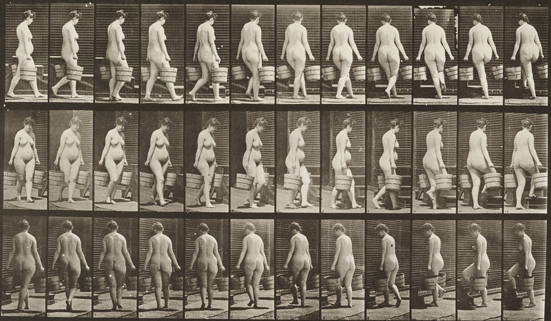 Nude woman turning to ascend stairs with a bucket of water (Animal Locomotion, 1887, plate 106)