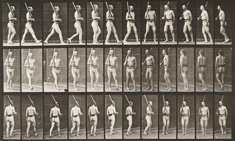 Man in pelvis cloth positioning bayonet (Animal Locomotion, 1887, plate 355)