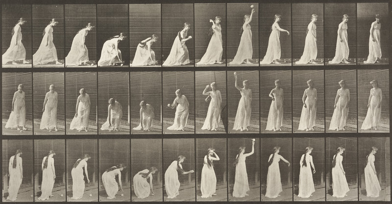 Semi-nude woman picking up a ball and throwing it (Animal Locomotion, 1887, plate 306)