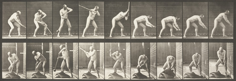 Nude man pounding with mallet (Animal Locomotion, 1887, plate 396)