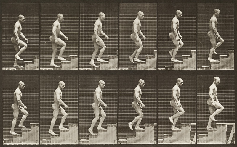 Nude man ascending stairs (Animal Locomotion, 1887, plate 91)