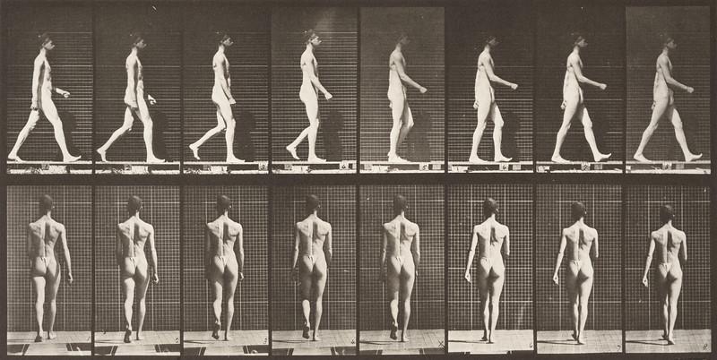 Man in pelvis cloth walking (Animal Locomotion, 1887, plate 9)