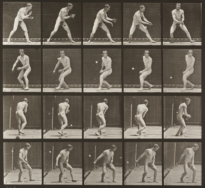 Nude man in a baseball error (Animal Locomotion, 1887, plate 288)