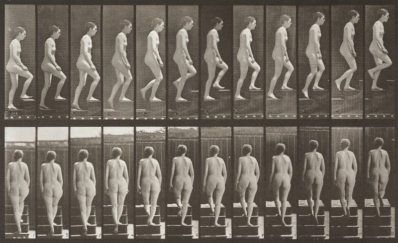 Nude woman ascending stairs (Animal Locomotion, 1887, plate 92)