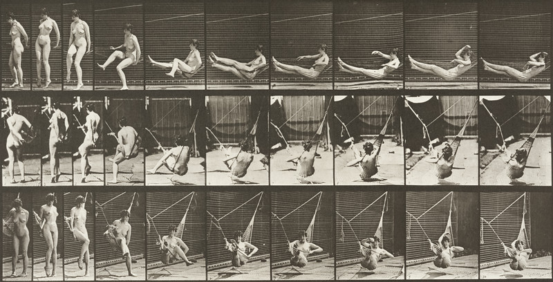 Nude woman getting into a hammock (Animal Locomotion, 1887, plate 261)