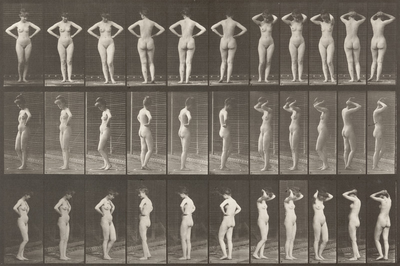 Nude woman striking various poses (Animal Locomotion, 1887, plate 531)