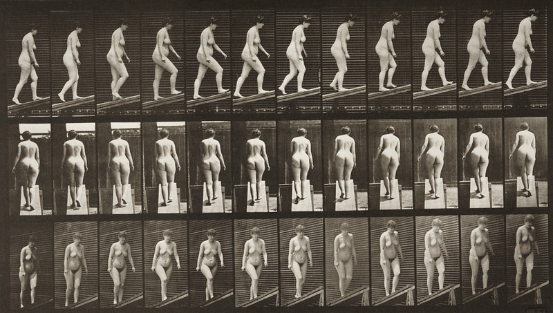 Nude woman ascending an incline (Animal Locomotion, 1887, plate 77)