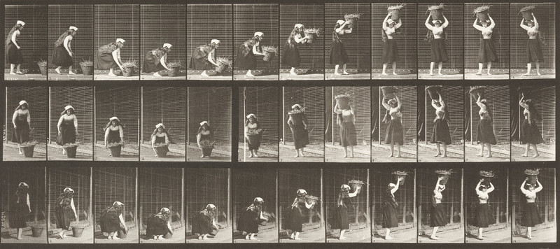 Woman lifting a 30 lb. basket from ground to head and turning (Animal Locomotion, 1887, plate 230)
