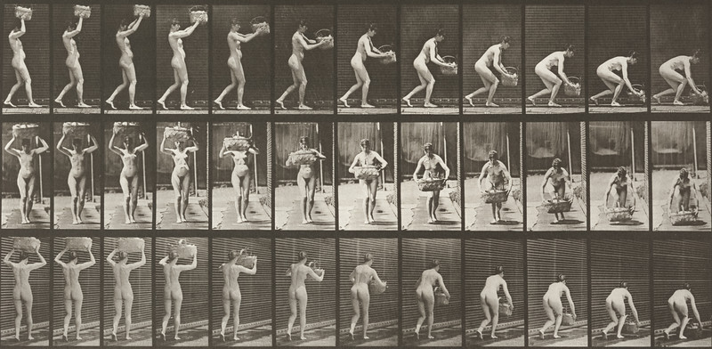 Nude woman taking basket from head (Animal Locomotion, 1887, plate 201)