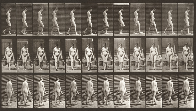 Nude woman walking with a bucket of water in each hand (Animal Locomotion, 1887, plate 32)