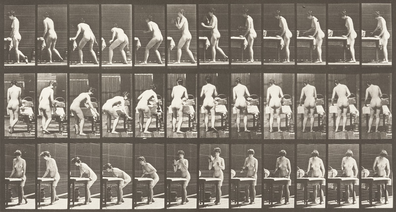 Nude woman ironing clothes (Animal Locomotion, 1887, plate 435)
