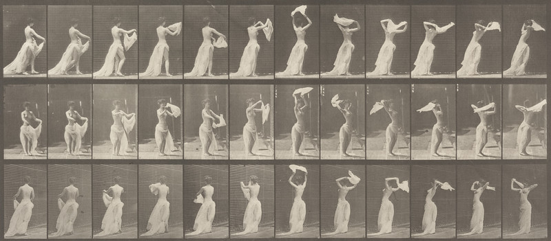Semi-nude woman throwing handkerchief around shoulders (Animal Locomotion, 1887, plate 421)