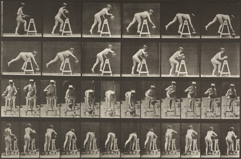 Nude woman bending over a trestle with a water jar (Animal Locomotion, 1887, plate 203)