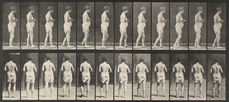 Semi-nude woman spastically walking (Animal Locomotion, 1887, plate 542)