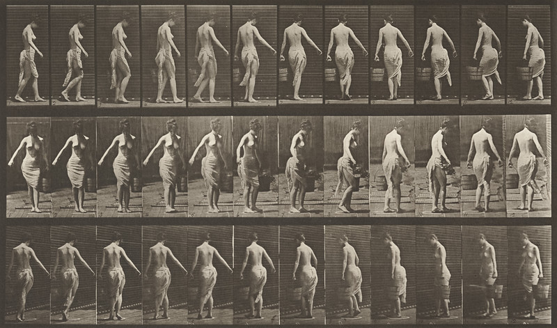 Walking and turning around carrying a bucket of water in left hand (Animal Locomotion, 1887, plate 50)
