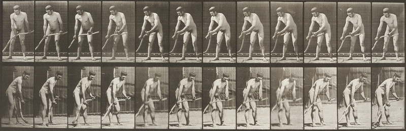 Nude farmer mowing grass (Animal Locomotion, 1887, plate 391)