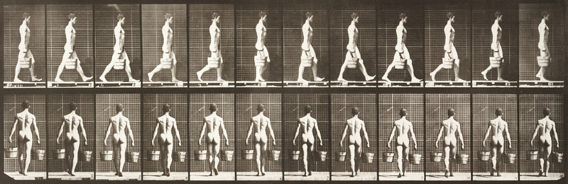 Nude man walking with a bucket of water in each hand (Animal Locomotion, 1887, plate 29)