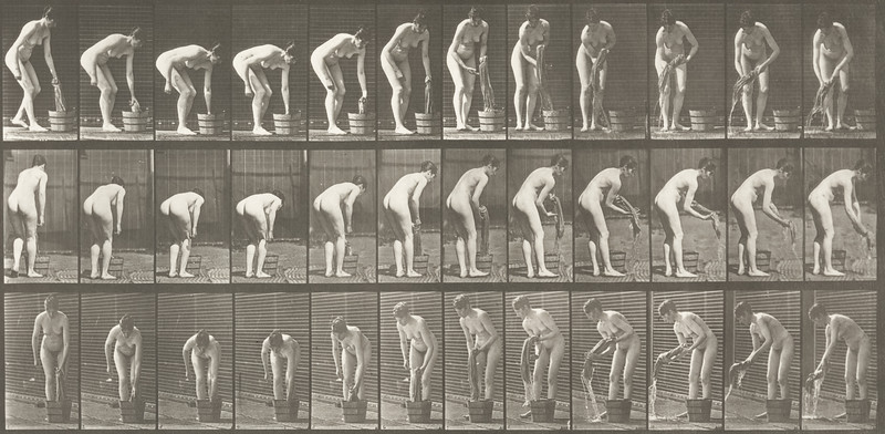 Nude woman wringing clothes (Animal Locomotion, 1887, plate 433)