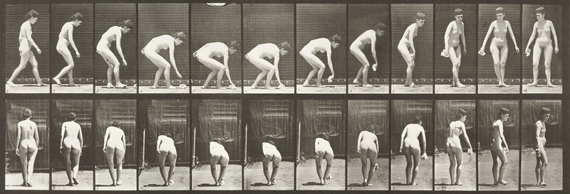 Nude woman stooping, lifting a handkerchief and turning (Animal Locomotion, 1887, plate 220)
