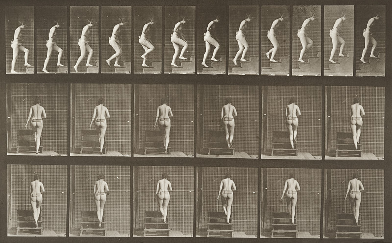 Nude woman ascending stairs (Animal Locomotion, 1887, plate 93)