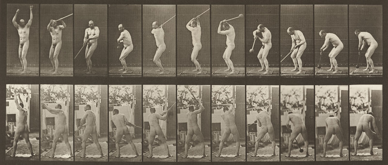 Nude man throwing the hammer (Animal Locomotion, 1887, plate 308)