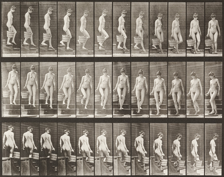 Nude woman descending stairs (Animal Locomotion, 1887, plate 145)