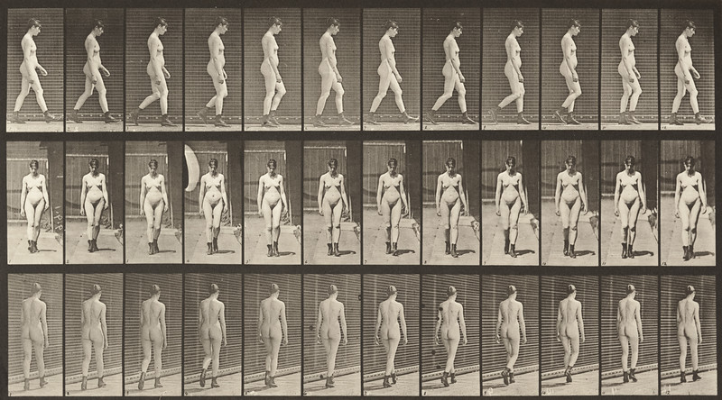 Nude woman walking in high-heeled boots (Animal Locomotion, 1887, plate 22)