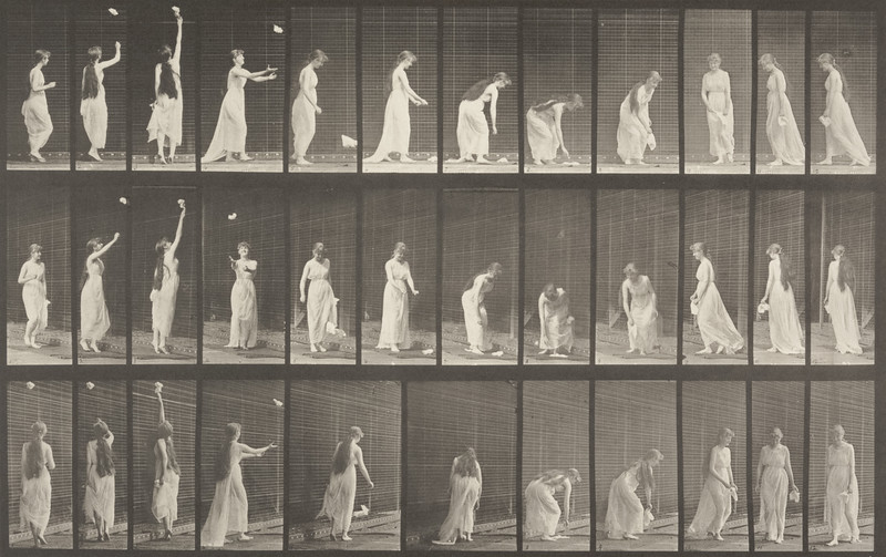 Draped woman reaching up, stooping and turning around (Animal Locomotion, 1887, plate 463)