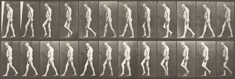 Nude man walking (Animal Locomotion, 1887, plate 555)